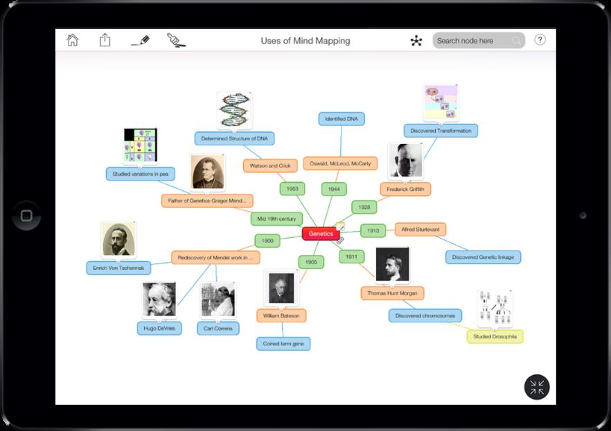 Mind Mapping for Brainstorm - Mind Vetor